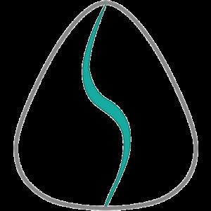 Anatomy of Sound logo